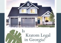 Kratom In Georgia