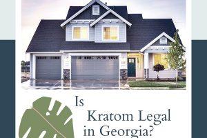 Kratom In Georgia