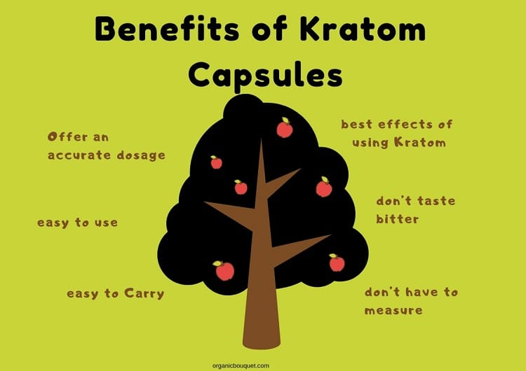Benefits of Kratom Capsules