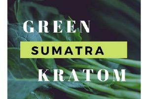 Green Sumatra Kratom