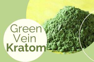 Green Vein Strain