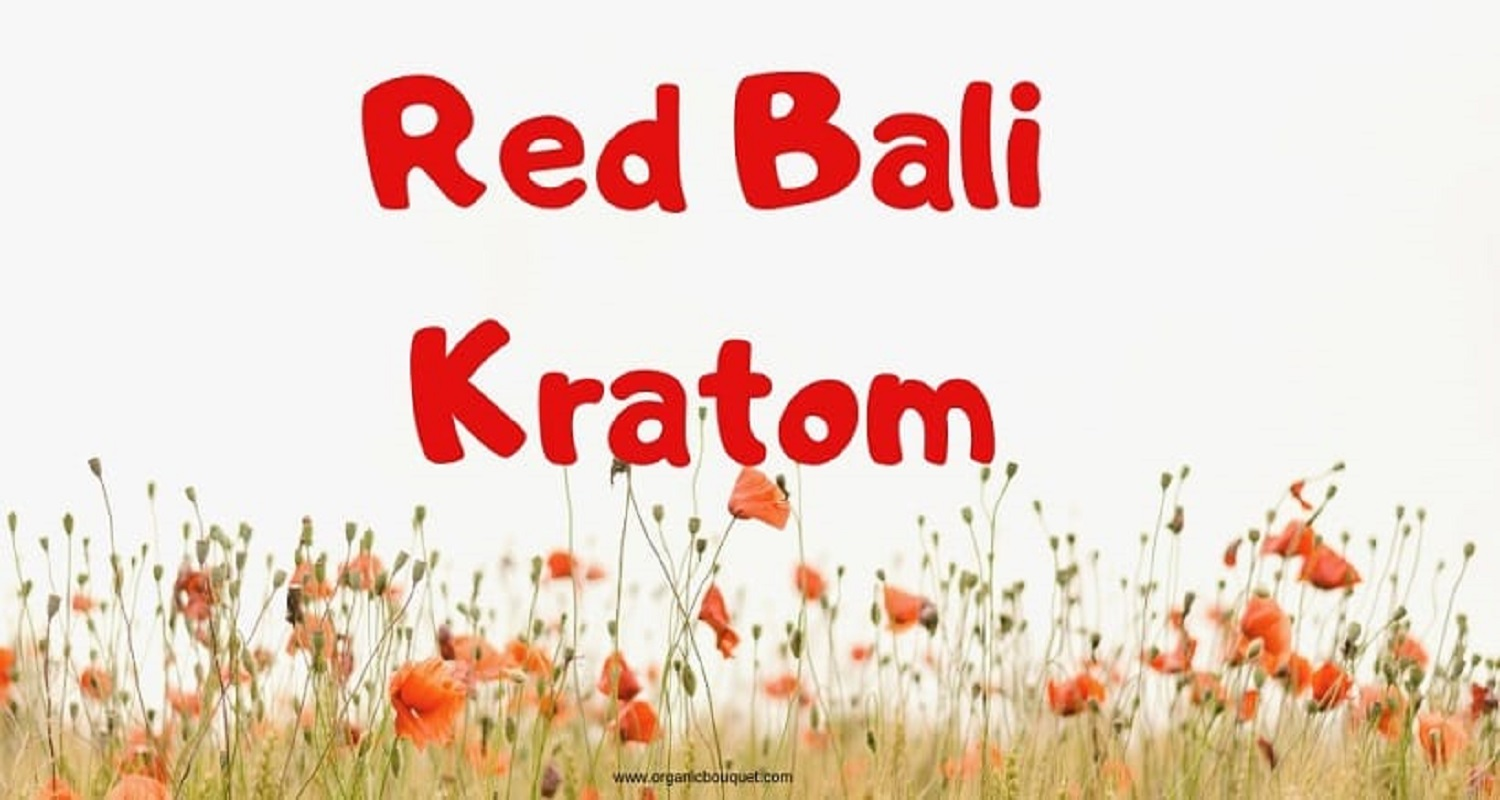 Red Bali Kratom Usage Dosage And Benefits Effects