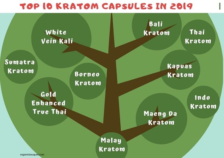 Top 10 Kratom Capsules in 2019