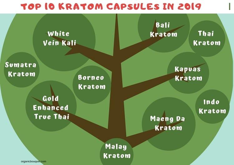Top 10 Kratom Capsules in 2019