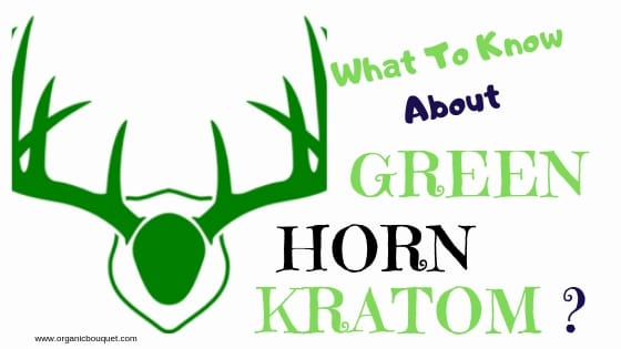 Gold Bali Kratom Why You Should Give It A Try For Benefits