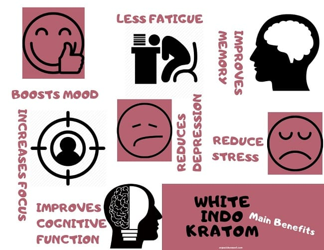 White Indo Kratom benefits