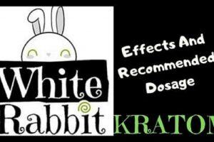 White Rabbit Kratom